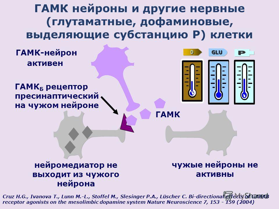 ГАМК нейроны и другие нервные (глутаматные, дофаминовые, выделяющие субстанцию P) клетки Cruz H.G., Ivanova T., Lunn M.-L., Stoffel M., Slesinger P.A., Lüscher C. Bi-directional effects of GABAB receptor agonists on the mesolimbic dopamine system Nat