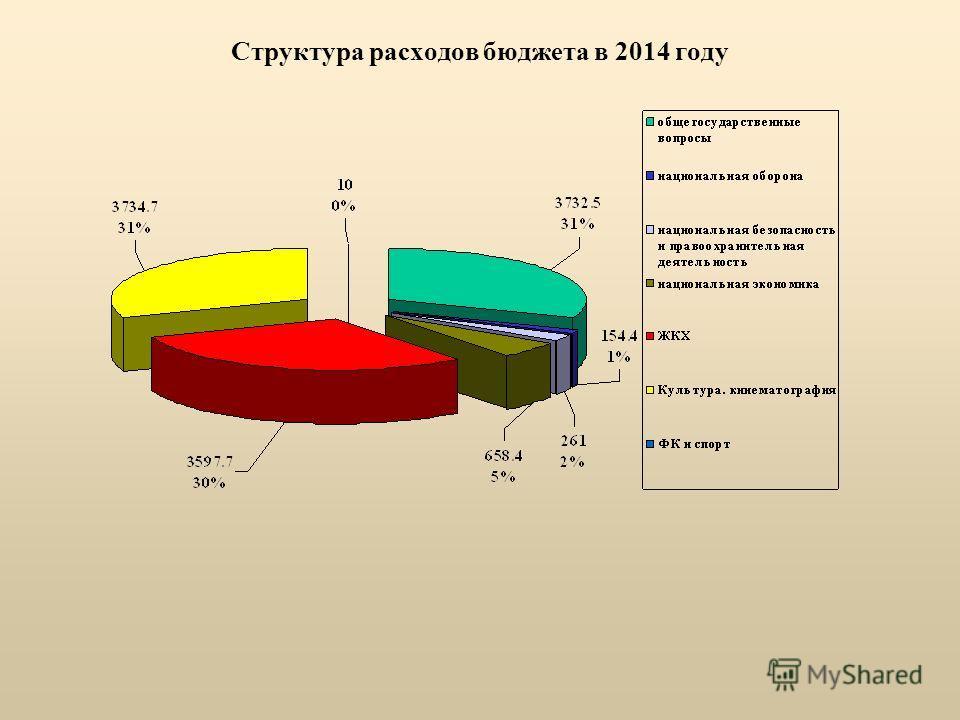 Структура расходов бюджета в 2014 году