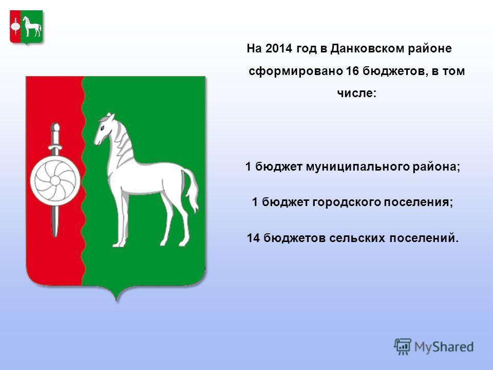 На 2014 год в Данковском районе сформировано 16 бюджетов, в том числе: 1 бюджет муниципального района; 1 бюджет городского поселения; 14 бюджетов сельских поселений.