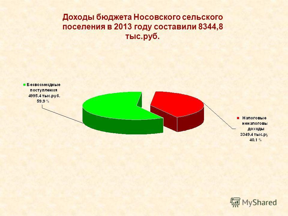 Доходы бюджета Носовского сельского поселения в 2013 году составили 8344,8 тыс.руб.