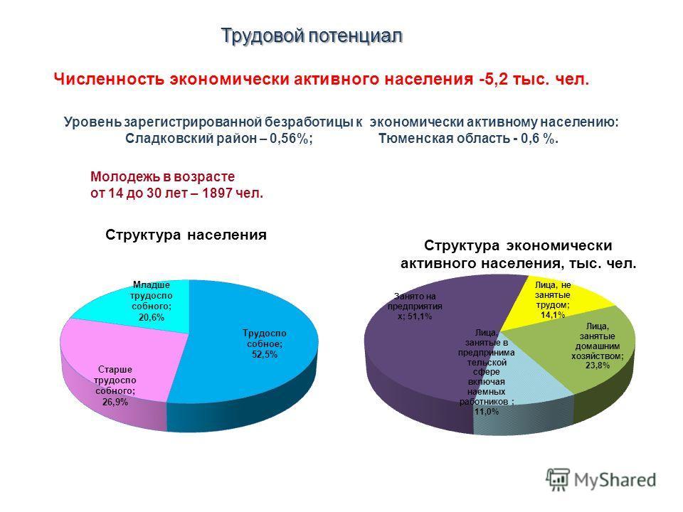 Трудовой потенциал Молодежь в возрасте от 14 до 30 лет – 1897 чел. Уровень зарегистрированной безработицы к экономически активному населению: Сладковский район – 0,56%; Тюменская область - 0,6 %. Численность экономически активного населения -5,2 тыс.