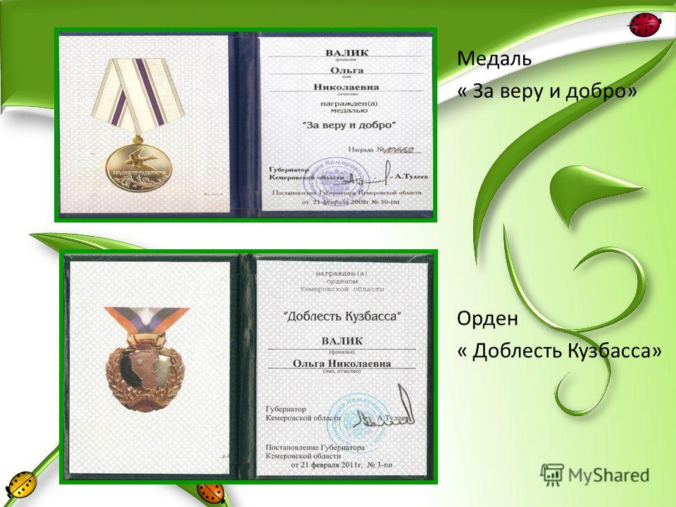 Медаль « За веру и добро» Орден « Доблесть Кузбасса»