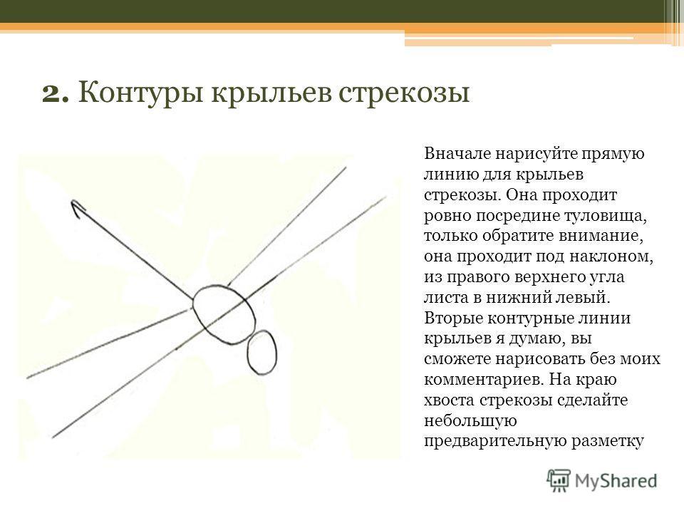 2. Контуры крыльев стрекозы Вначале нарисуйте прямую линию для крыльев стрекозы. Она проходит ровно посредине туловища, только обратите внимание, она проходит под наклоном, из правого верхнего угла листа в нижний левый. Вторые контурные линии крыльев