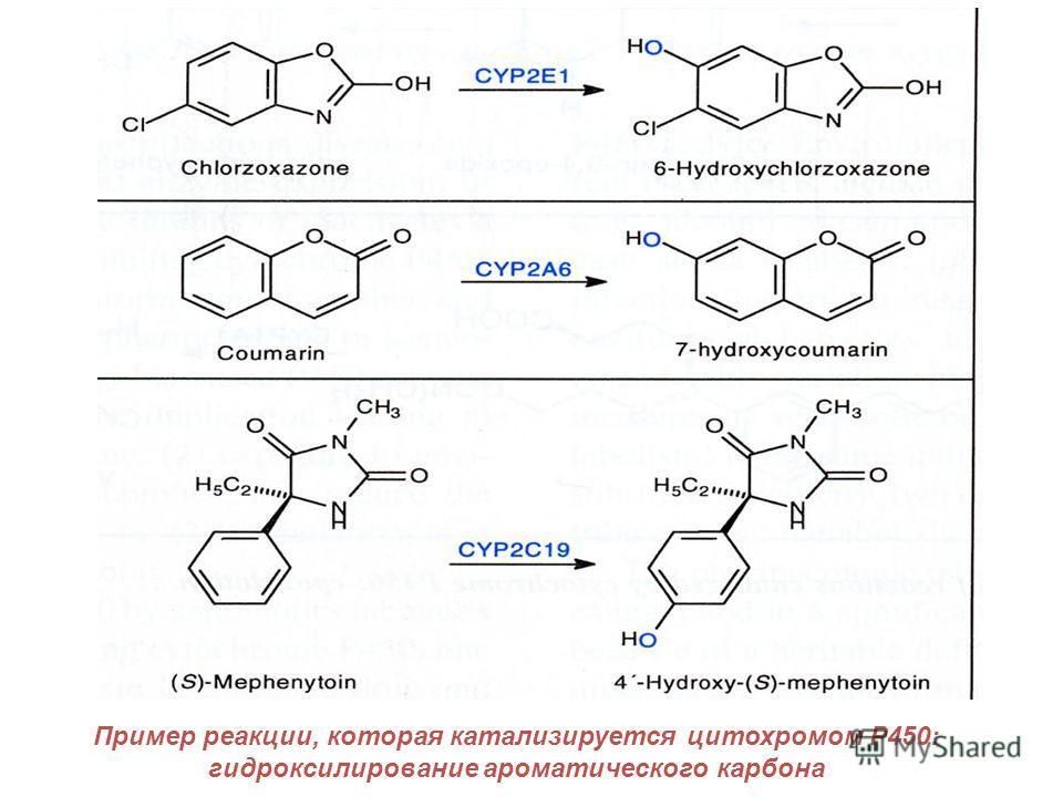 Пример реакции, которая катализируется цитохромом P450: гидроксилирование ароматического карбона