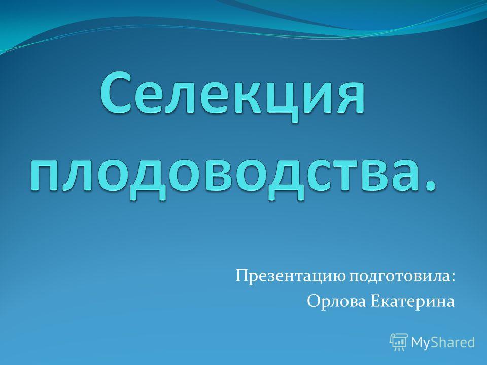 Презентацию подготовила: Орлова Екатерина