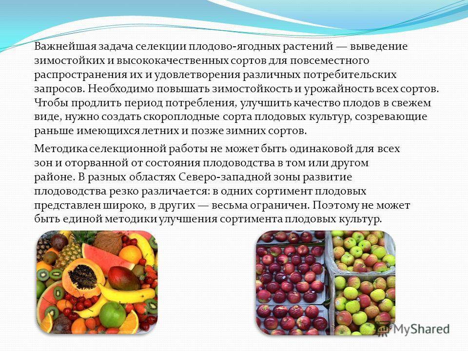 Важнейшая задача селекции плодово-ягодных растений выведение зимостойких и высококачественных сортов для повсеместного распространения их и удовлетворения различных потребительских запросов. Необходимо повышать зимостойкость и урожайность всех сортов