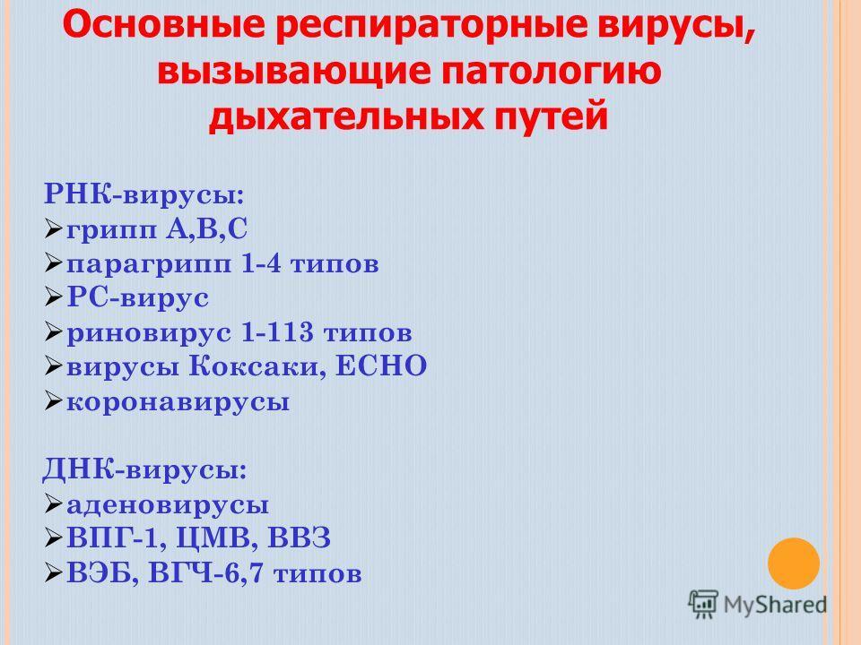 РНК-вирусы: грипп А,В,С парагрипп 1-4 типов РС-вирус риновирус 1-113 типов вирусы Коксаки, ЕСНО коронавирусы ДНК-вирусы: аденовирусы ВПГ-1, ЦМВ, ВВЗ ВЭБ, ВГЧ-6,7 типов Основные респираторные вирусы, вызывающие патологию дыхательных путей