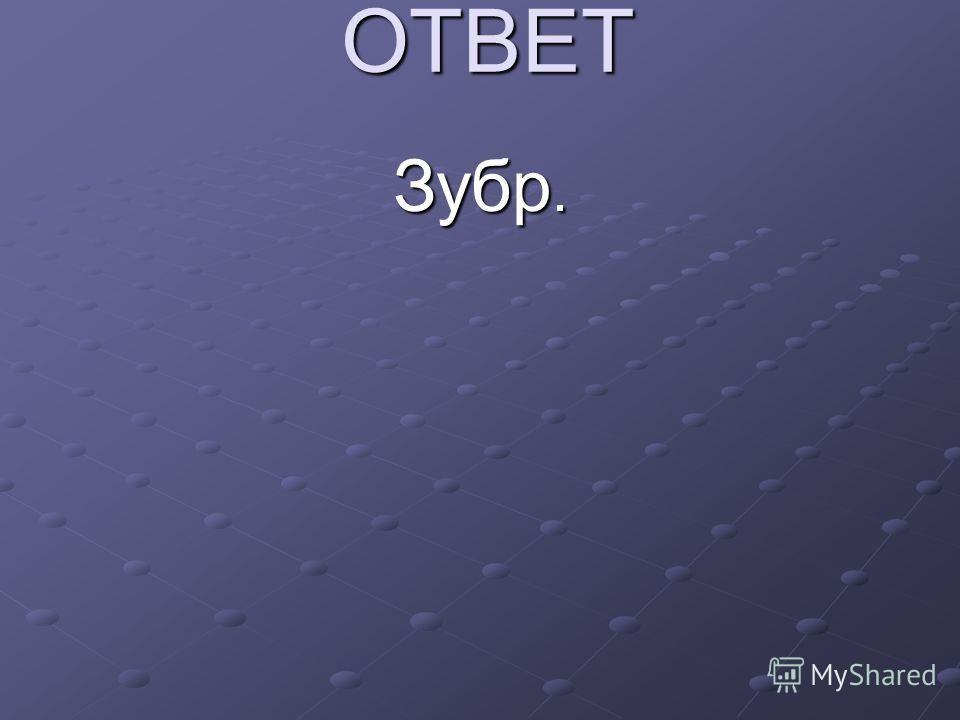 ОТВЕТ Зубр.