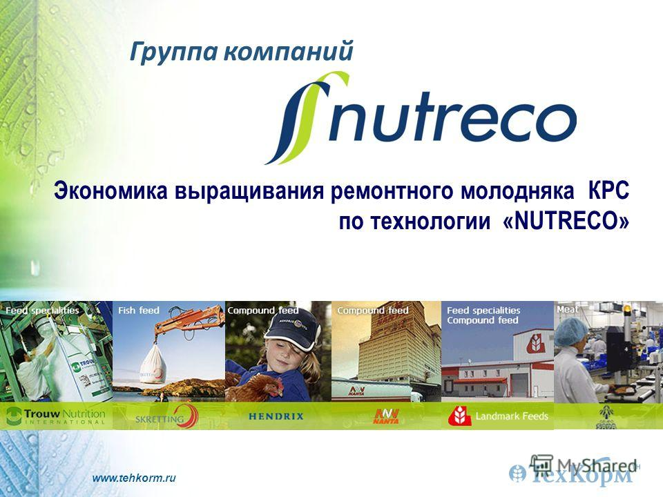 www.tehkorm.ru Группа компаний Экономика выращивания ремонтного молодняка КРС по технологии «NUTRECO»