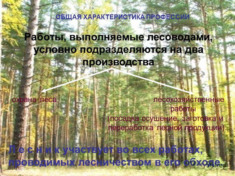 ОБЩАЯ ХАРАКТЕРИСТИКА ПРОФЕССИИ Работы, выполняемые лесоводами, условно подразделяются на два производства охрана леса лесохозяйственные работы (посадка осушение, заготовка и переработка лесной продукции). Л е с н и к участвует во всех работах, провод