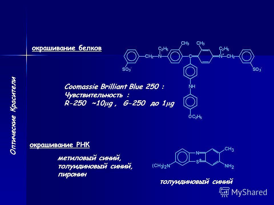 Оптические Красители окрашивание белков Coomassie Brilliant Blue 250 : Чувствительность : R-250 ~10 g, G-250 до 1 g окрашивание РНК метиловый синий, толуидиновый синий, пиронин толуидиновый синий CH N S + (CH 3 ) N 3 N H 2 2
