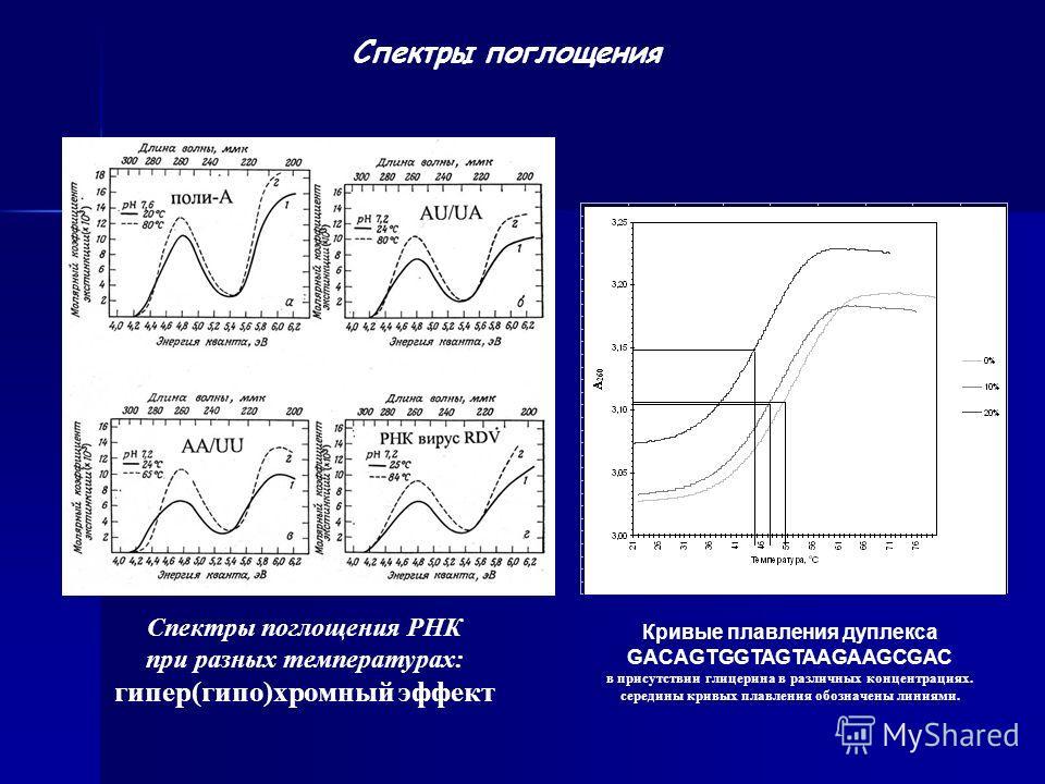 Спектры поглощения Спектры поглощения РНК при разных температурах: гипер(гипо)хромный эффект Кривые плавления дуплекса GACAGTGGTAGTAAGAAGCGAC в присутствии глицерина в различных концентрациях. середины кривых плавления обозначены линиями.