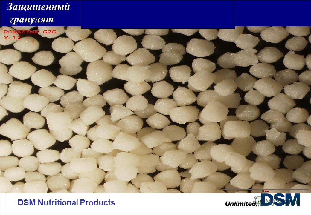DSM Nutritional Products Защишенный гранулят