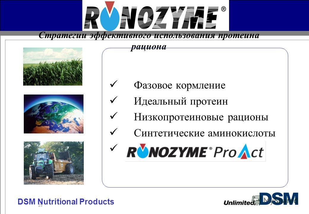 DSM Nutritional Products 25 Стратегии эффективного использования протеина рациона Фазовое кормление Идеальный протеин Низкопротеиновые рационы Синтетические аминокислоты Использование протеаз
