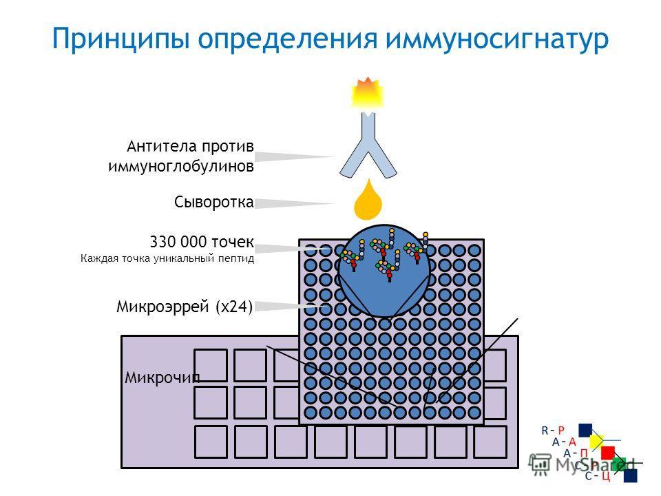 Микрочип Микроэррей (х 24) 330 000 точек Каждая точка уникальный пептид Сыворотка Антитела против иммуноглобулинов Принципы определения иммуносигнатур