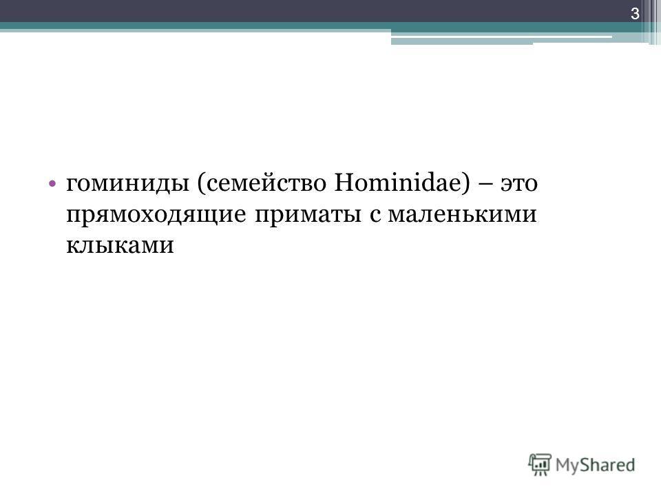 гоминиды (семейство Hominidae) – это прямоходящие приматы с маленькими клыками 3