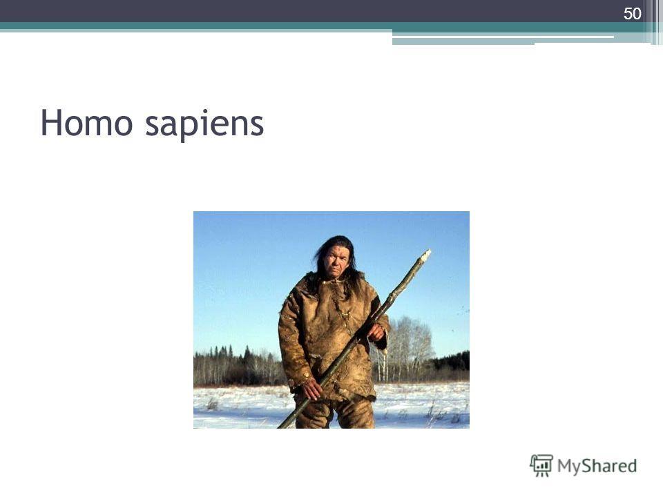 Homo sapiens 50
