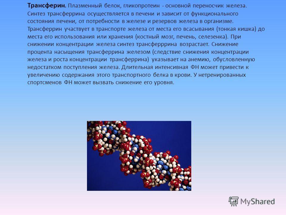 Трансферин. Плазменный белок, гликопротеин - основной переносчик железа. Синтез трансферрина осуществляется в печени и зависит от функционального состояния печени, от потребности в железе и резервов железа в организме. Трансферрин участвует в транспо