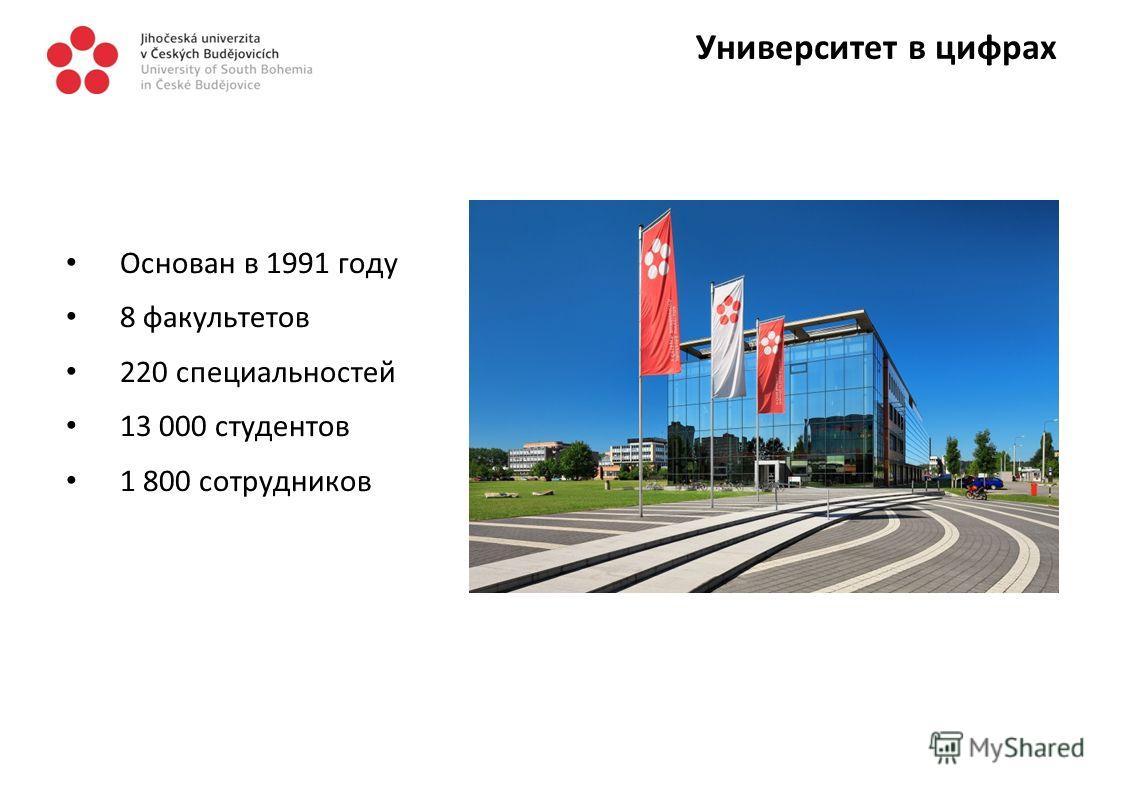 Университет в цифрах Основан в 1991 году 8 факультетов 220 специальностей 13 000 студентов 1 800 сотрудников