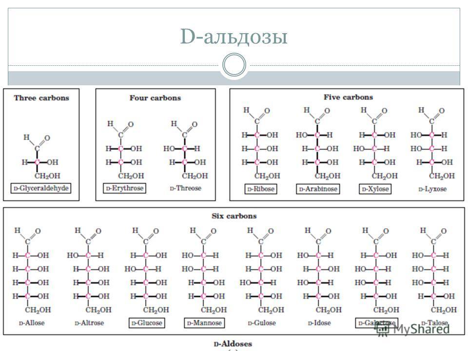 D-альдозы
