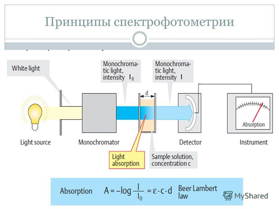 Принципы спектрофотометрии