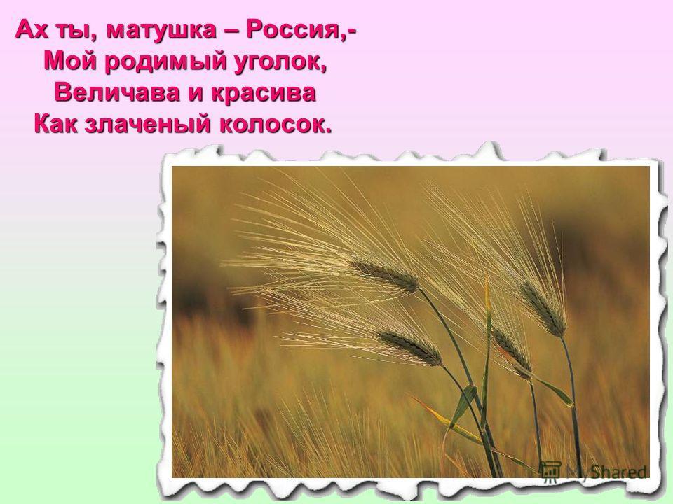 Ах ты, матушка – Россия,- Мой родимый уголок, Величава и красива Как злаченый колосок.