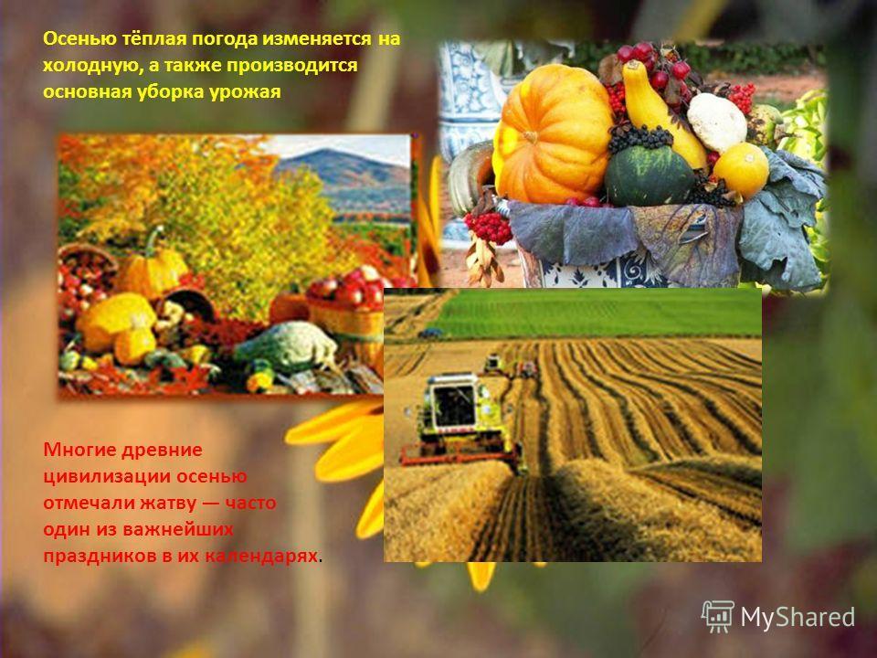 Осенью тёплая погода изменяется на холодную, а также производится основная уборка урожая Многие древние цивилизации осенью отмечали жатву часто один из важнейших праздников в их календарях.