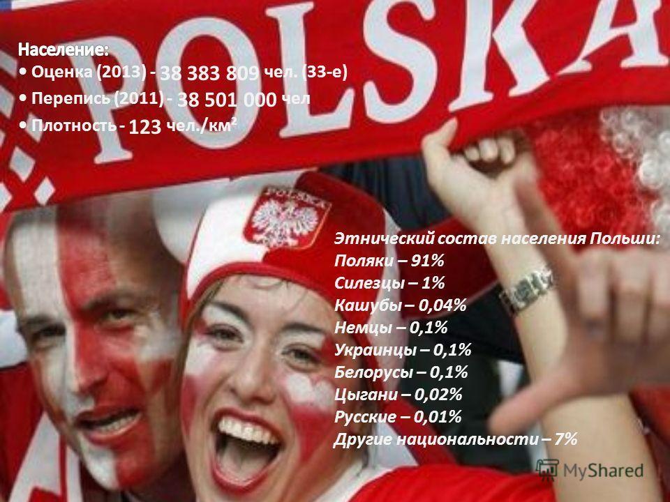 Этнический состав населения Польши: Поляки – 91% Силезцы – 1% Кашубы – 0,04% Немцы – 0,1% Украинцы – 0,1% Белорусы – 0,1% Цыгани – 0,02% Русские – 0,01% Другие национальности – 7%