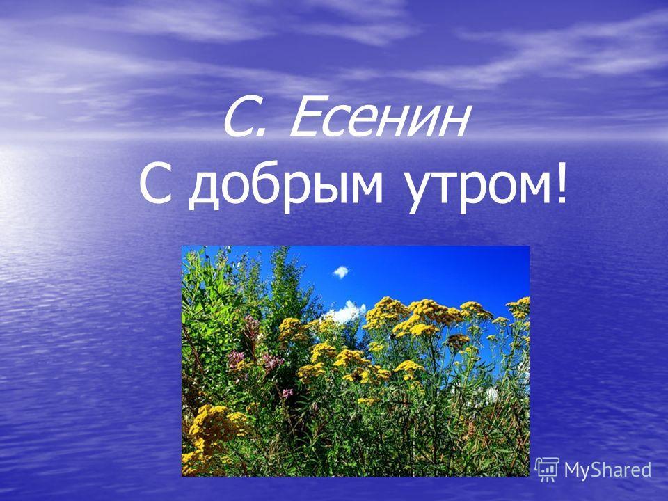 С. Есенин С добрым утром!