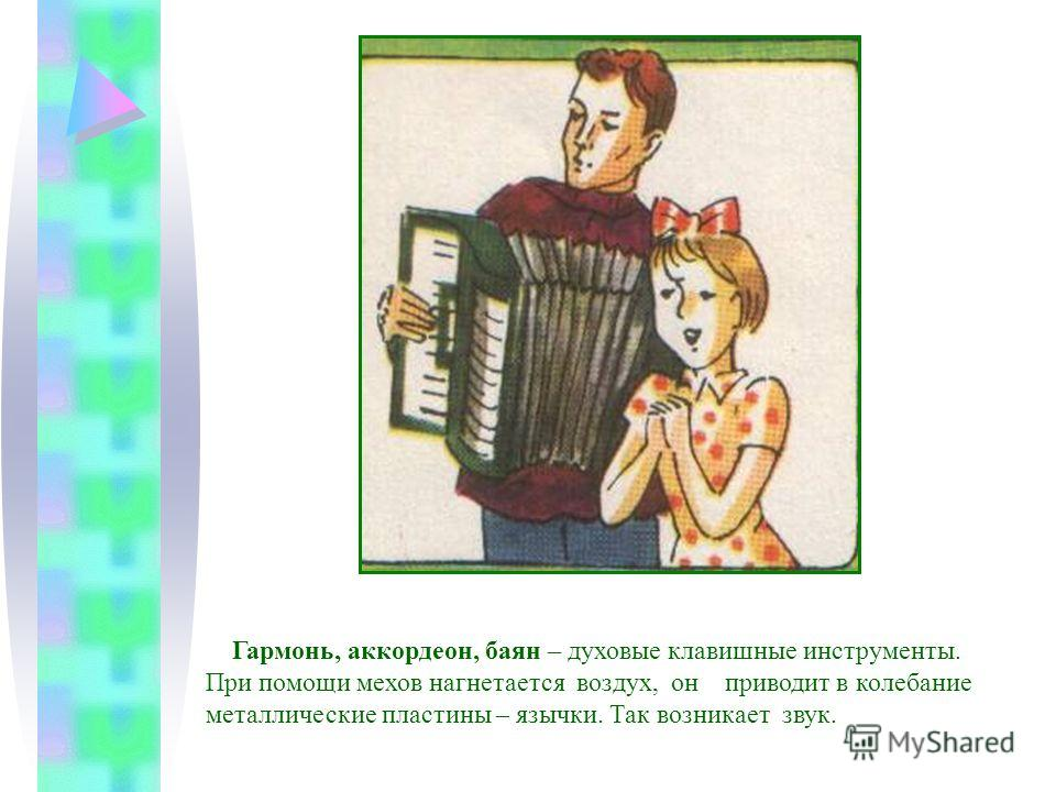 Гармонь, аккордеон, баян – духовые клавишные инструменты. При помощи мехов нагнетается воздух, он приводит в колебание металлические пластины – язычки. Так возникает звук.