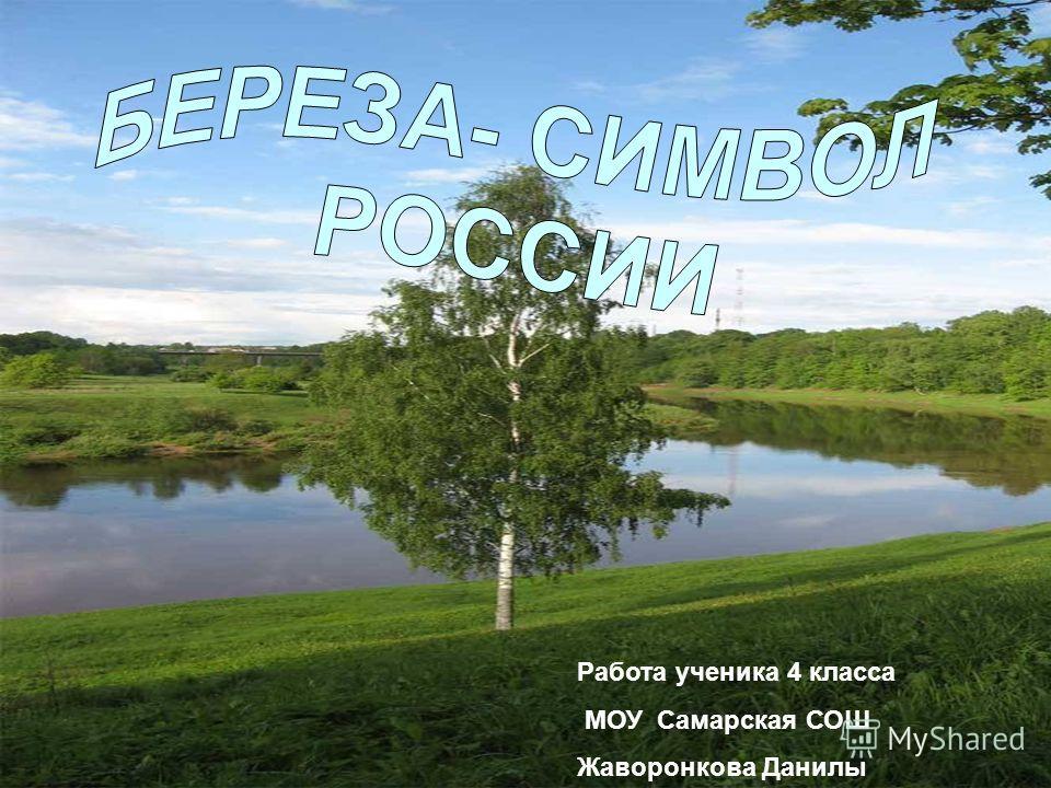 Работа ученика 4 класса МОУ Самарская СОШ Жаворонкова Данилы