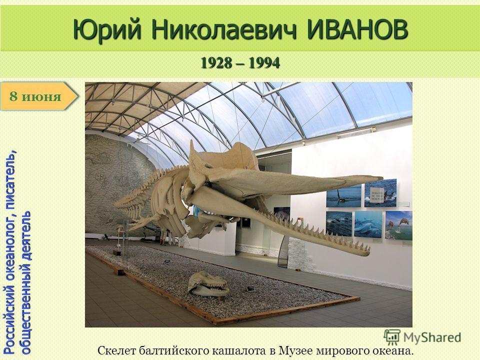 1928 – 1994 1 января Российский океанолог, писатель, общественный деятель Юрий Николаевич ИВАНОВ Скелет балтийского кашалота в Музее мирового океана. 8 июня