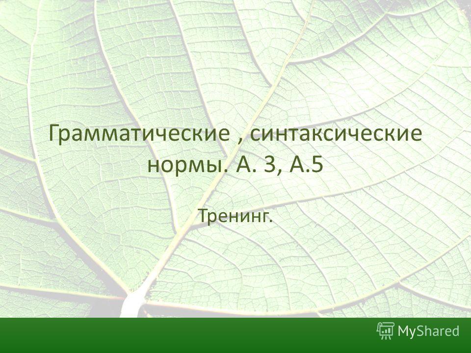 Грамматические, синтаксические нормы. А. 3, А.5 Тренинг.