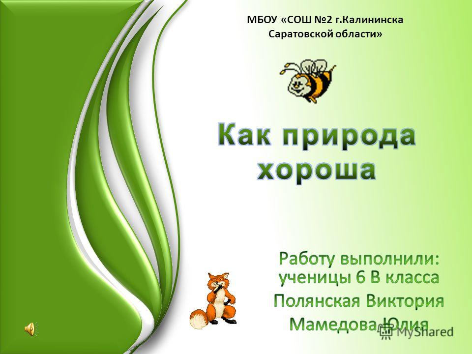 МБОУ «СОШ 2 г.Калининска Саратовской области»