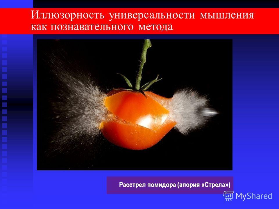 Иллюзорность универсальности мышления как познавательного метода Расстрел помидора (апория «Стрела»)