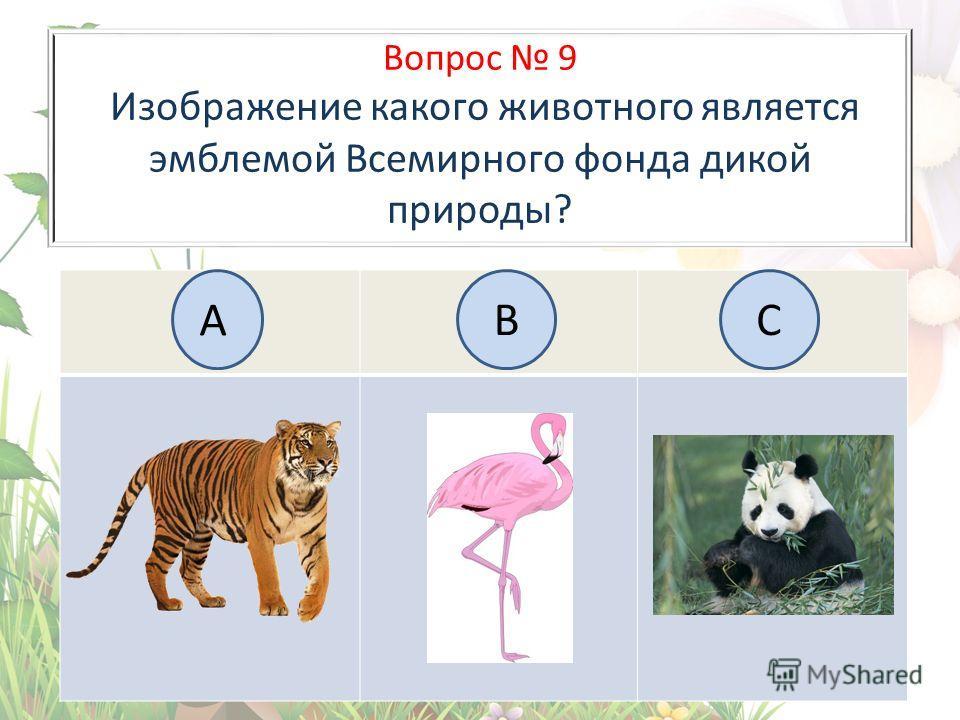 Вопрос 9 Изображение какого животного является эмблемой Всемирного фонда дикой природы? А BC
