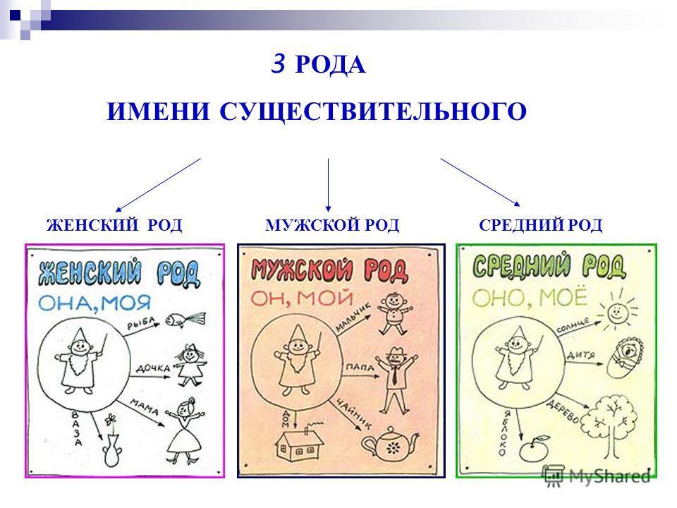 3 РОДА ИМЕНИ СУЩЕСТВИТЕЛЬНОГО ЖЕНСКИЙ РОДМУЖСКОЙ РОДСРЕДНИЙ РОД