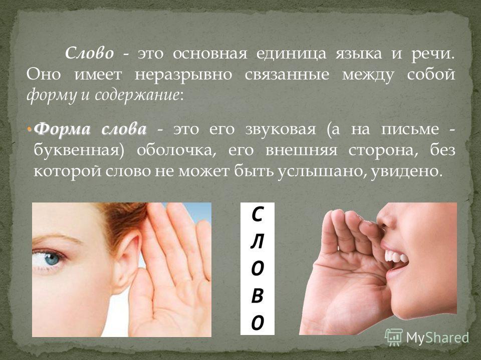 Слово - это основная единица языка и речи. Оно имеет неразрывно связанные между собой форму и содержание : Форма слова Форма слова - это его звуковая (а на письме - буквенная) оболочка, его внешняя сторона, без которой слово не может быть услышано, у