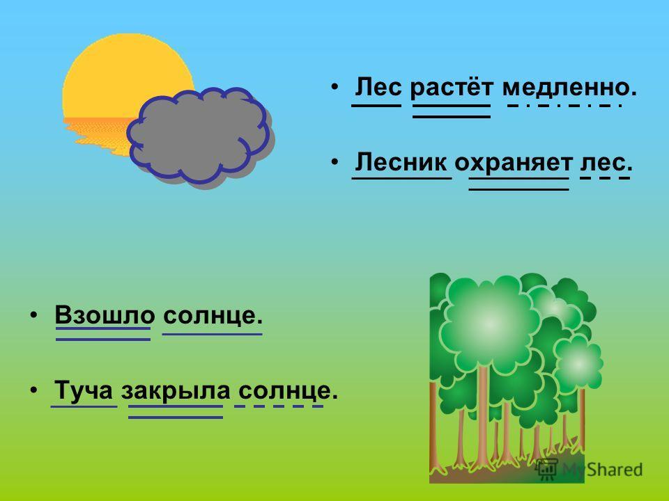 Взошло солнце. Туча закрыла солнце. Лес растёт медленно. Лесник охраняет лес.