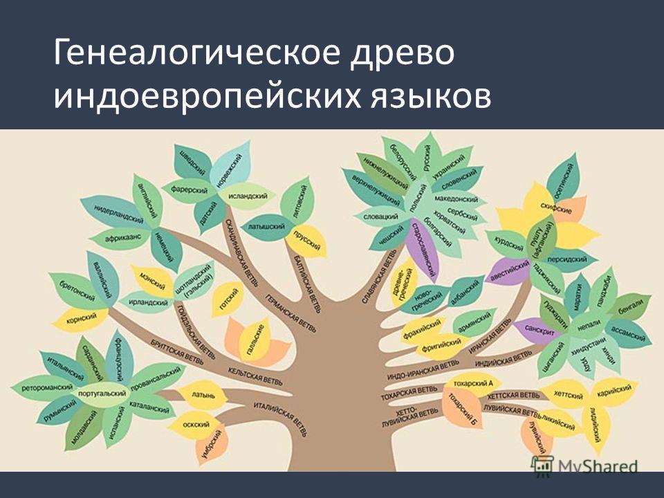 Генеалогическое древо индоевропейских языков