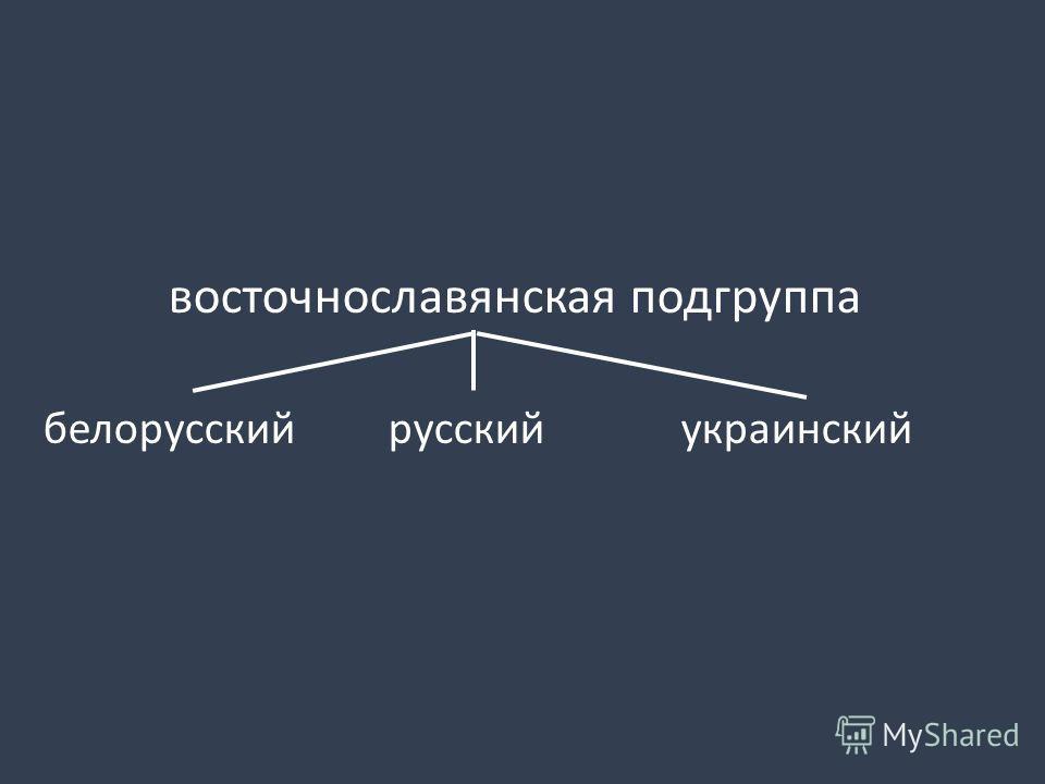 восточнославянская подгруппа белорусский русский украинский