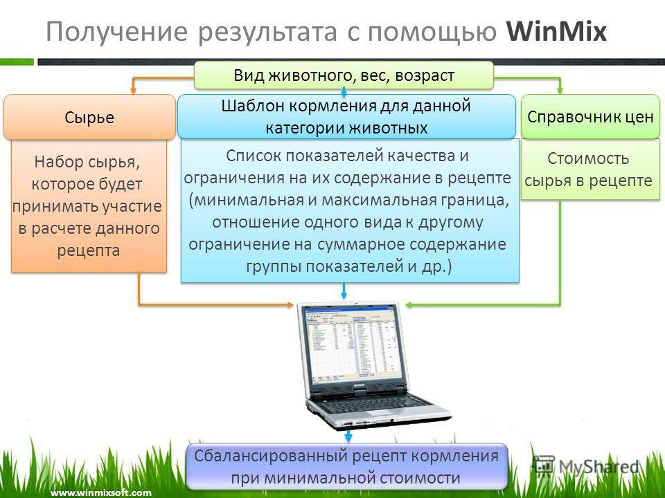 Получение результата с помощью WinMix Вид животного, вес, возраст Сбалансированный рецепт кормления при минимальной стоимости Сбалансированный рецепт кормления при минимальной стоимости Набор сырья, которое будет принимать участие в расчете данного р