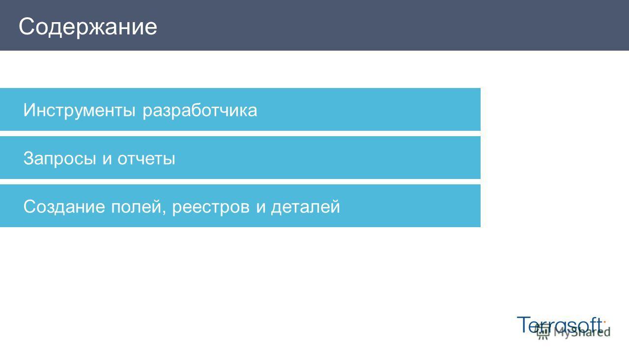 Содержание Инструменты разработчика Запросы и отчеты Создание полей, реестров и деталей