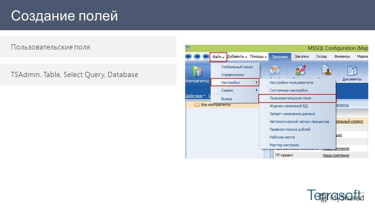Создание полей Пользовательские поля TSAdmin. Table, Select Query, Database