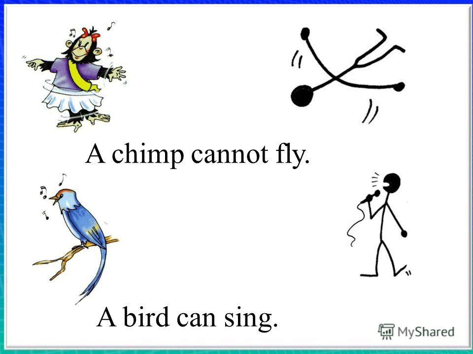 A chimp cannot fly. A bird can sing.