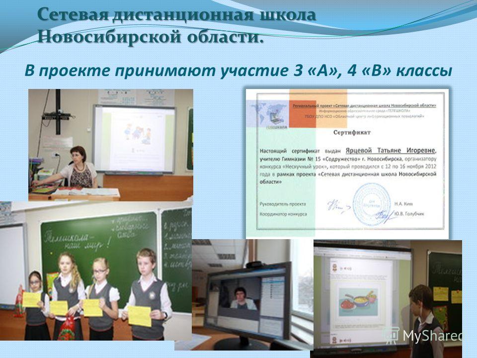В проекте принимают участие 3 «А», 4 «В» классы Сетевая дистанционная школа Новосибирской области.