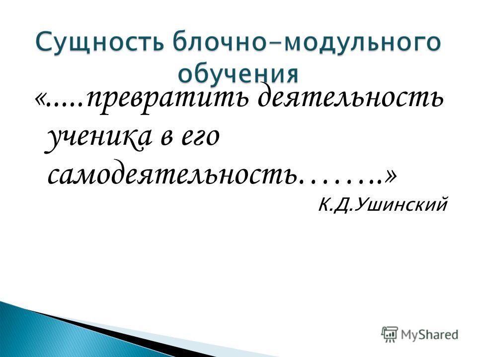 «.....превратить деятельность ученика в его самодеятельность……..» К.Д.Ушинский