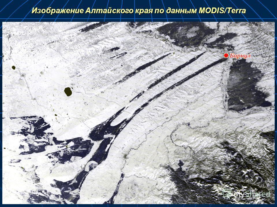 Изображение Алтайского края по данным MODIS/Terra