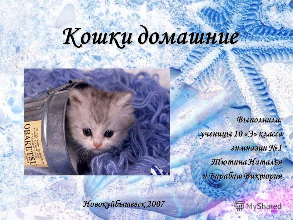 Кошки домашние Выполнили: ученицы 10 «Э» класса гимназии 1 Тютина Наталья и Барабаш Виктория Новокуйбышевск 2007