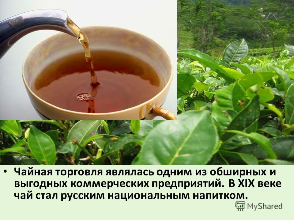 Чайная торговля являлась одним из обширных и выгодных коммерческих предприятий. В XIX веке чай стал русским национальным напитком.